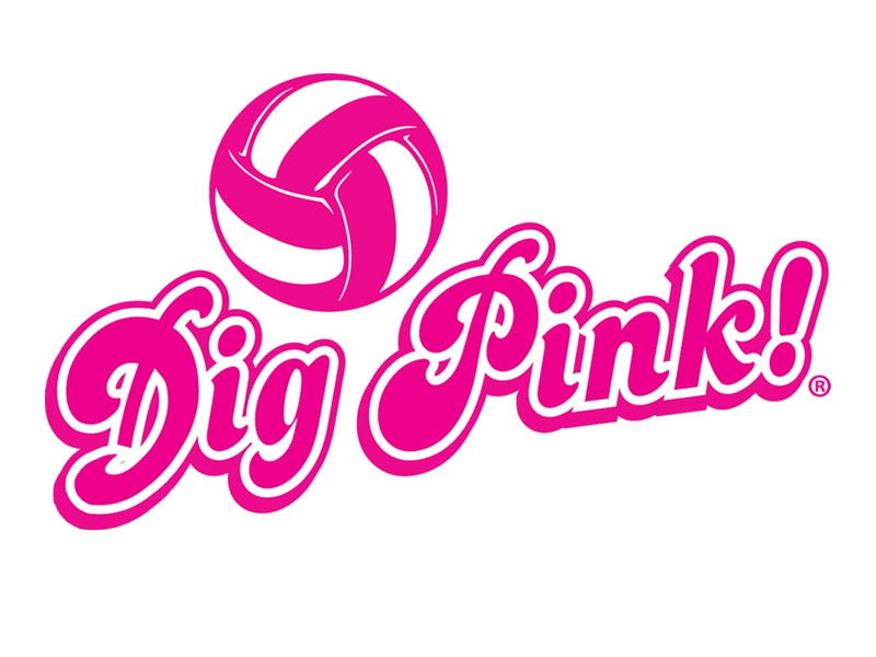 2c7ba60b DIG PINK: Volleyball Dig Pink Match Set For Oct. 30 vs. Coker ...
